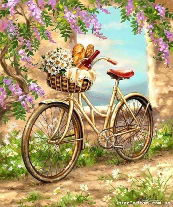 Картинки велосипед с цветами прованс